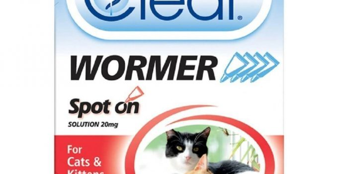 Best Cat and Dog Wormers Reviews