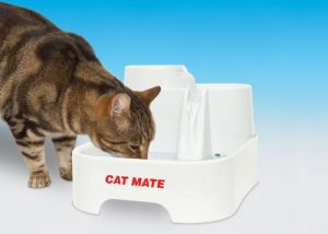 Cat Mate Fresh Water Drinking Fountain Review