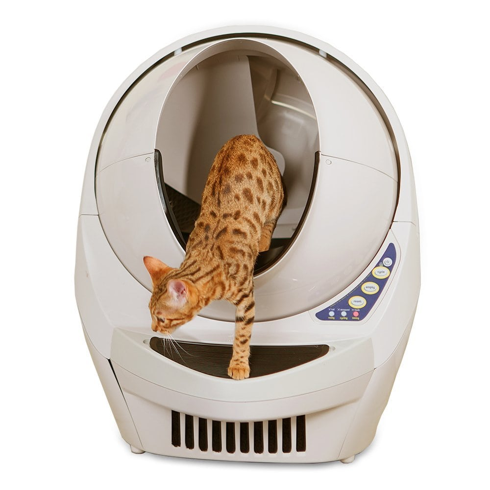 Best Self Cleaning Cat Litter Boxes Reviews