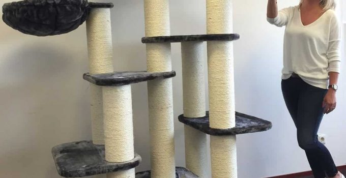 Best Cat Scratching Post Reviews