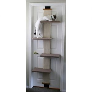 SmartCat Multi-Level Climber